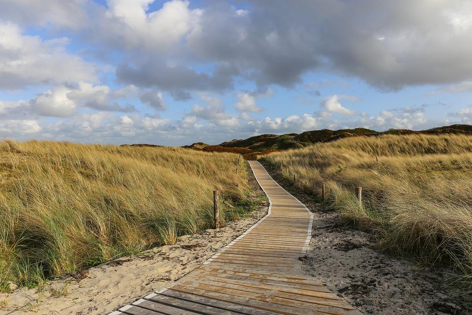 Nature, Grass, Landscape, Germany, North Sea, Langeoog