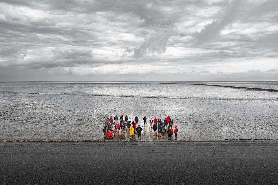 Mudflat Hiking, Wadden Sea, North Sea, Flat Coast
