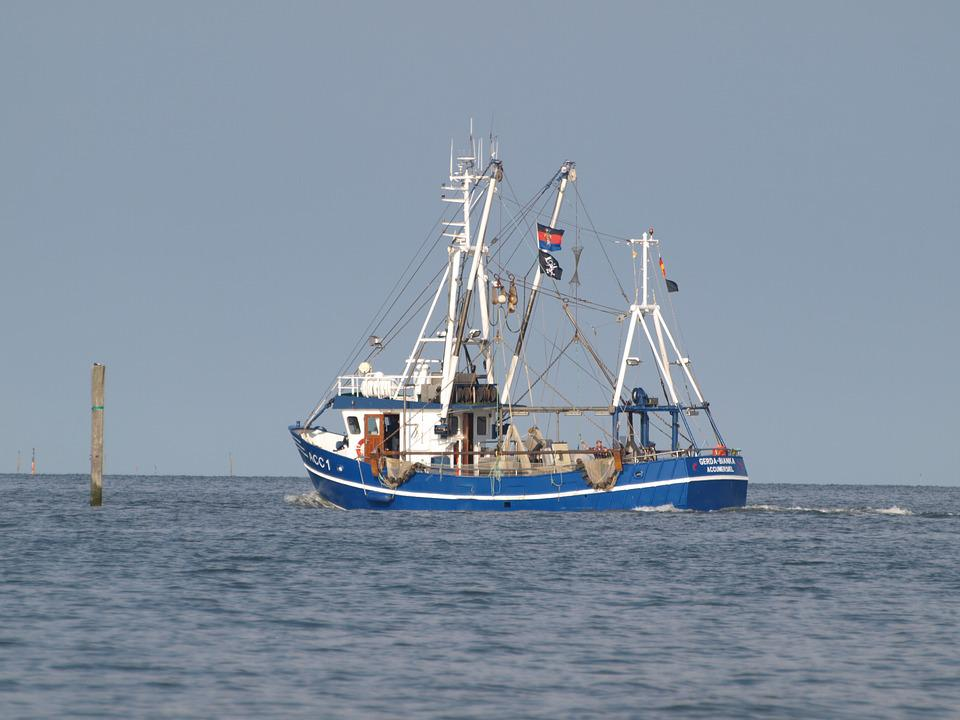 Fishing Vessel, Shrimp, North Sea, Cutter, Ship