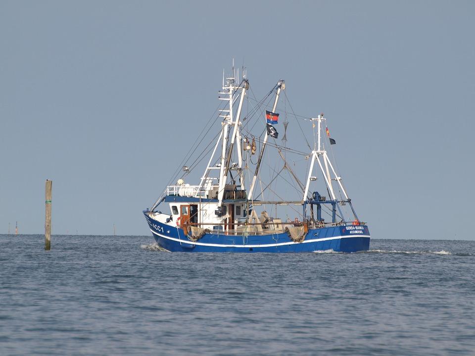 Fishing Vessel, Shrimp, North Sea, Cutter, Ship