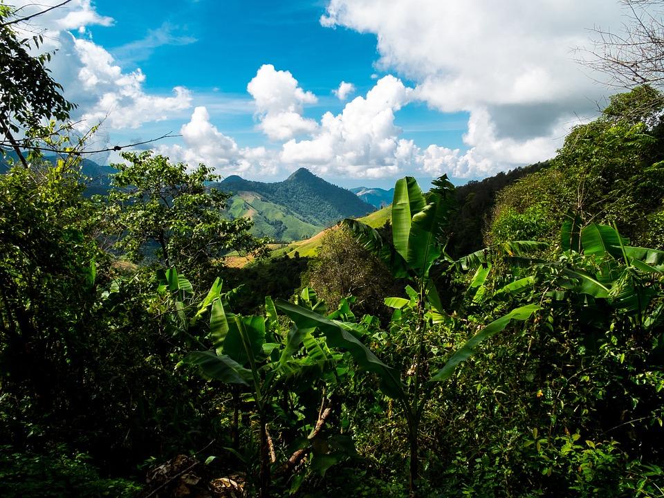 Mountain Landscape, Mountains, North Thailand