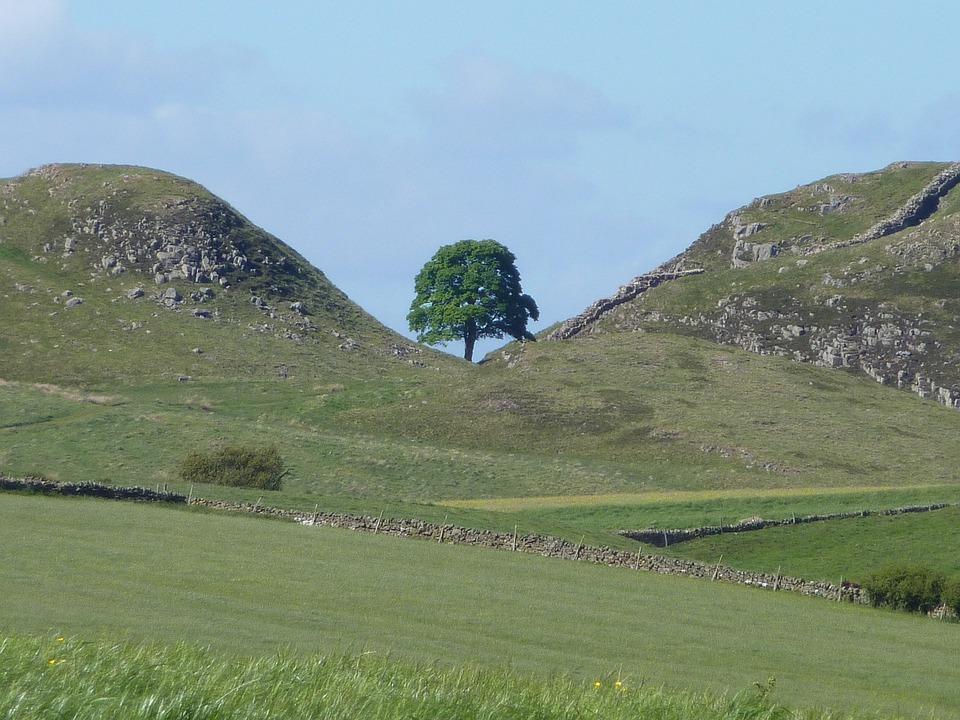 Sycamore Gap, Northumberland, Hadrian's Wall