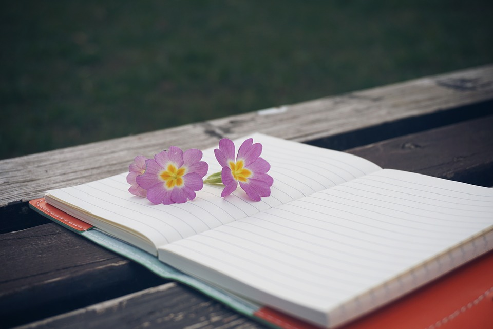 Bench, Flower, Notebook, Pen, Wooden, Notepad