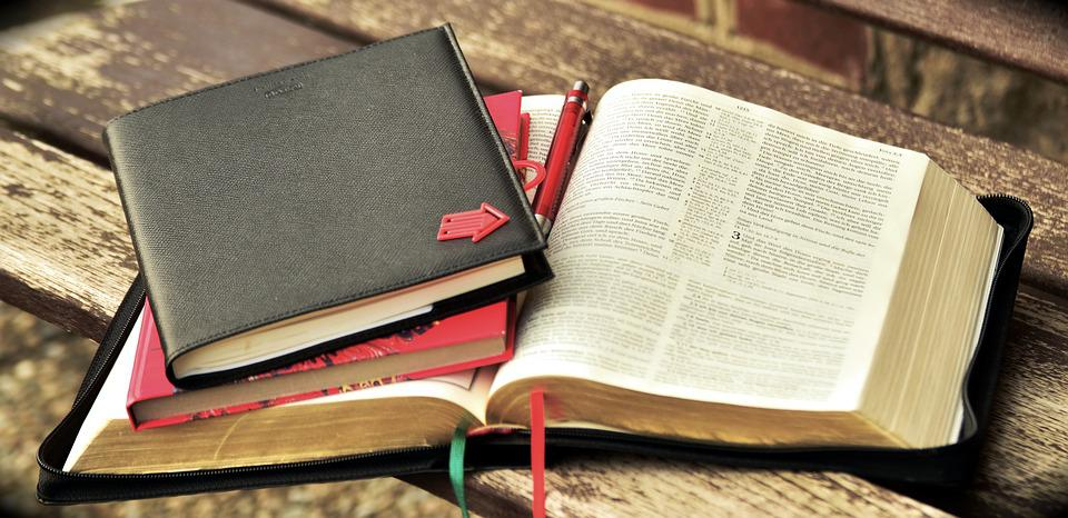 Book, Read, Bible, Study, Notes, Write, Pages