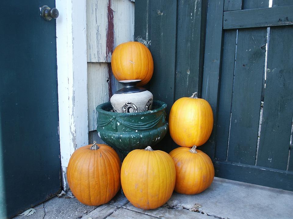Autumn, November, Pumpkin, Fall, October, Pumpkins
