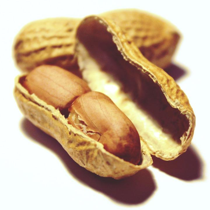 Peanuts, Nuts, Snack, Nutrition, Healthy, Nibble