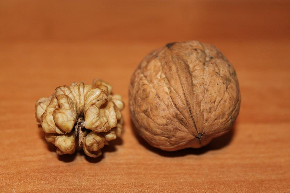 Walnut, Nuts, Walnuts, Close, Autumn, Brain, Naturkost