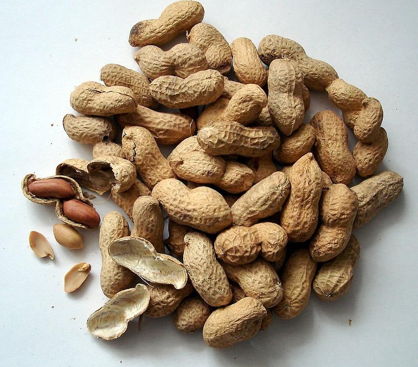 Peanuts, Nuts, Cores, Snack