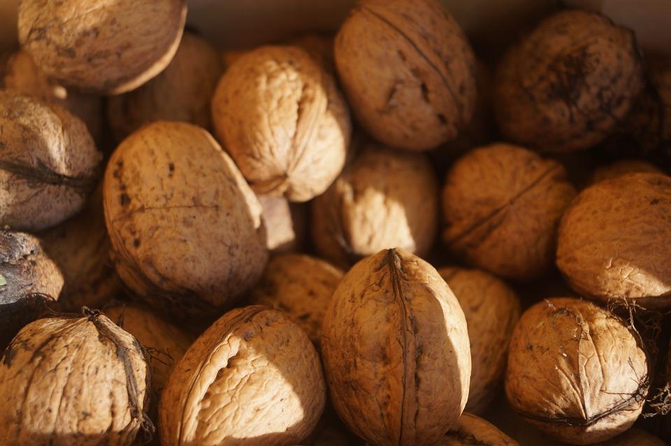 Хочу харчо! - Страница 3 Nuts-Shell-Fruit-Bowl-Brown-Walnuts-Nut-Walnut-1761693