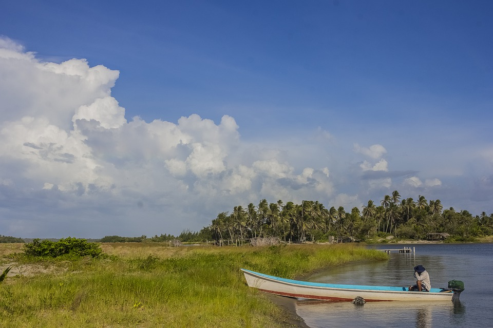 Boat, Sky, Fern, River, Nature, Nuve, Green