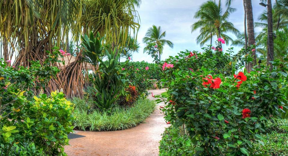 Hawaii, Oahu, Ko Olina, Marriott, Resort, Tropical