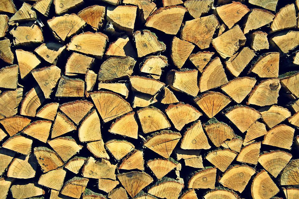 Wood, Oak, Dumb, The Background, Nature, Forest