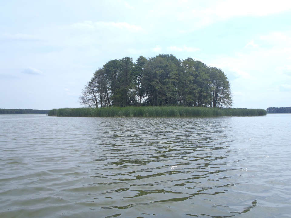 Island, Lake, Obra, Poland, Nature, Water, Tree