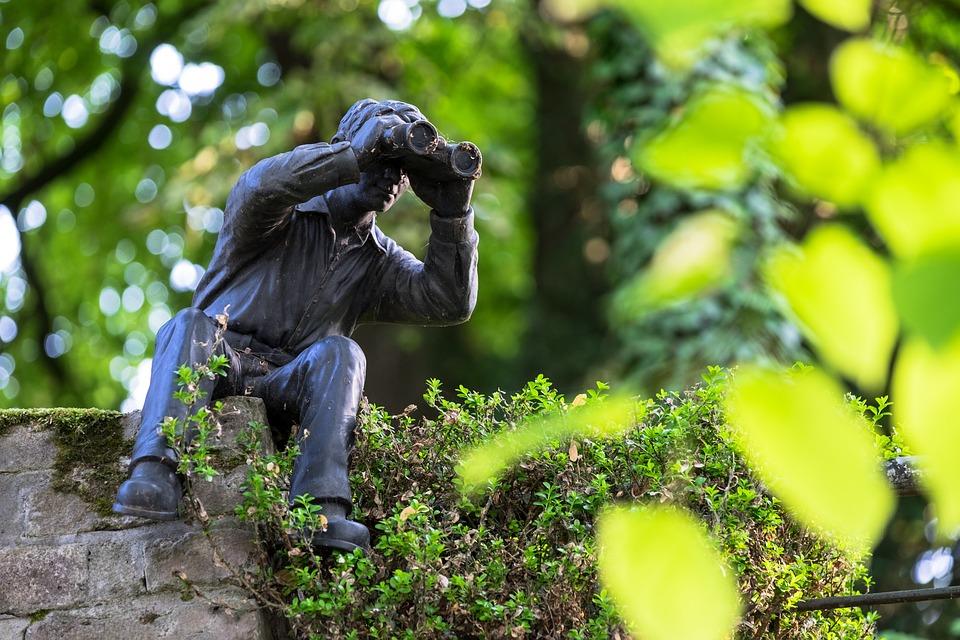 Binoculars, Watch, Observation, Observe, Surveillance
