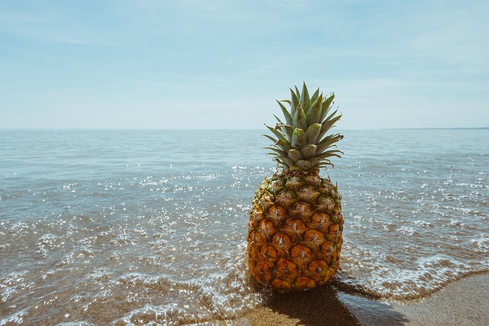 Pineapple, Beach, Tropical, Coast, Fruit, Ocean, Sea