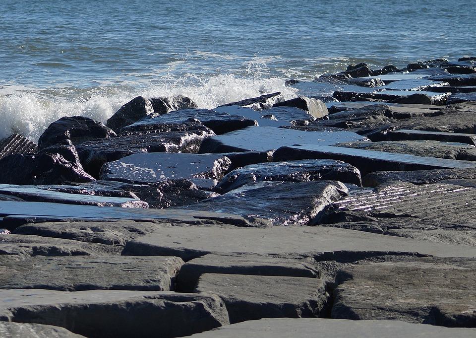 Beach, Shore, Rocks, Ocean, Atlantic City, Bird