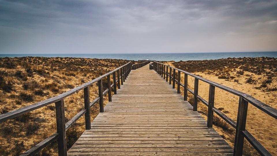 Wood, Catwalk, Sea, Sky, Nature, Beach, Ocean
