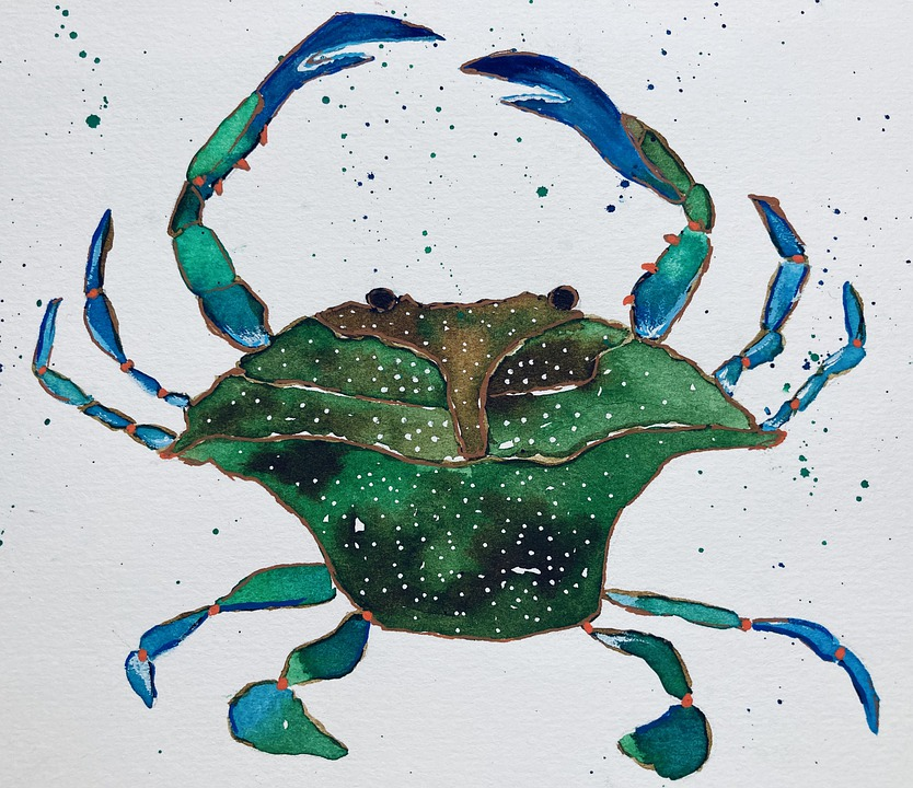 Crab, Sea Animals, Ocean