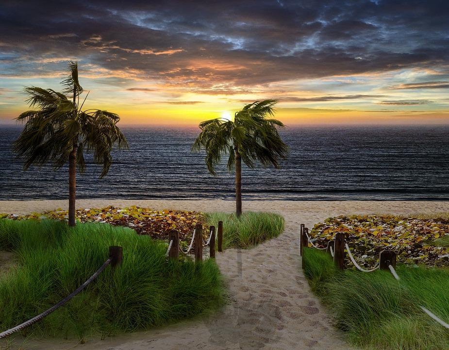 Fantasy, Landscape, Beach, Sunset, Palm Tree, Ocean
