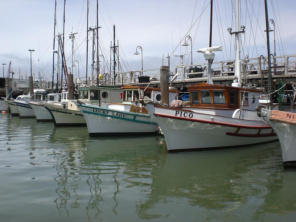 Fishing Boats, San Francisco, Ocean, Fisher's Wharf