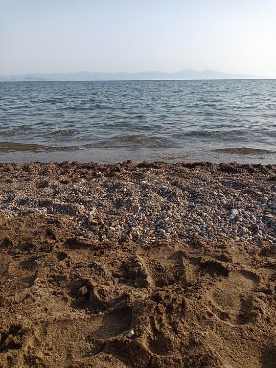 Ocean, Sand, Beach, Shells, Waves, Coast