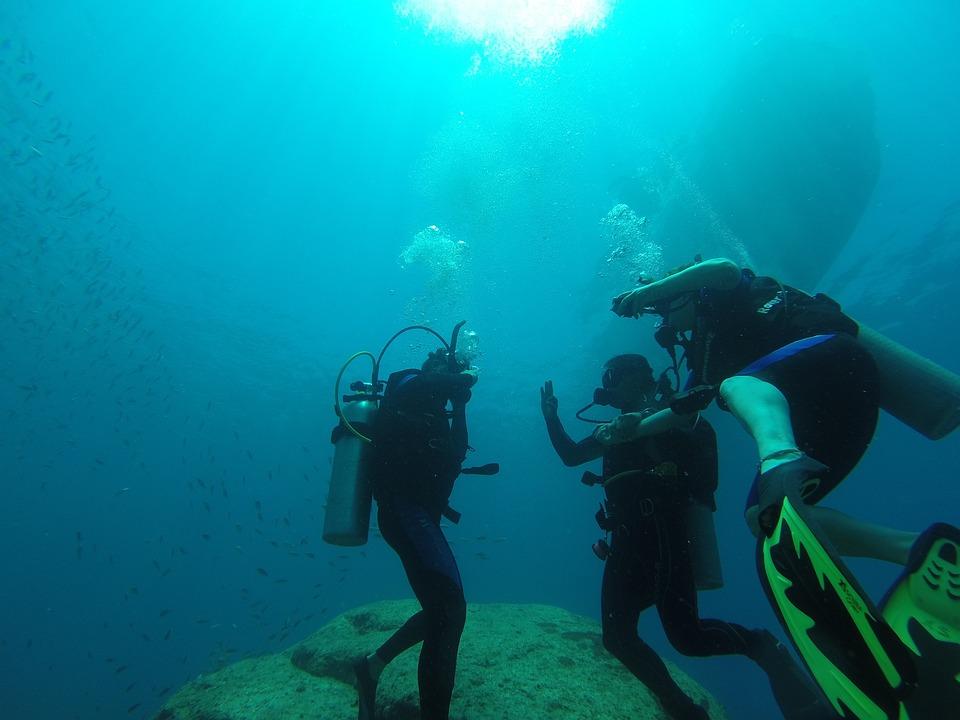 Diving, Scuba, Sea, Ocean, Scuba Diving, Nature