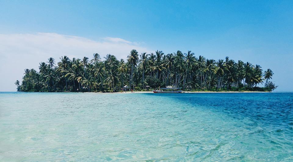Beach, Island, Palm Trees, Nature, Ocean, Paradise, Sea