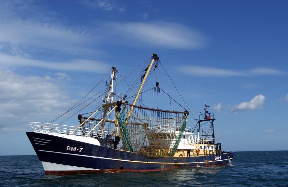 Sea, Trawler, Boat, Fishing, Ship, Sky, Water, Ocean