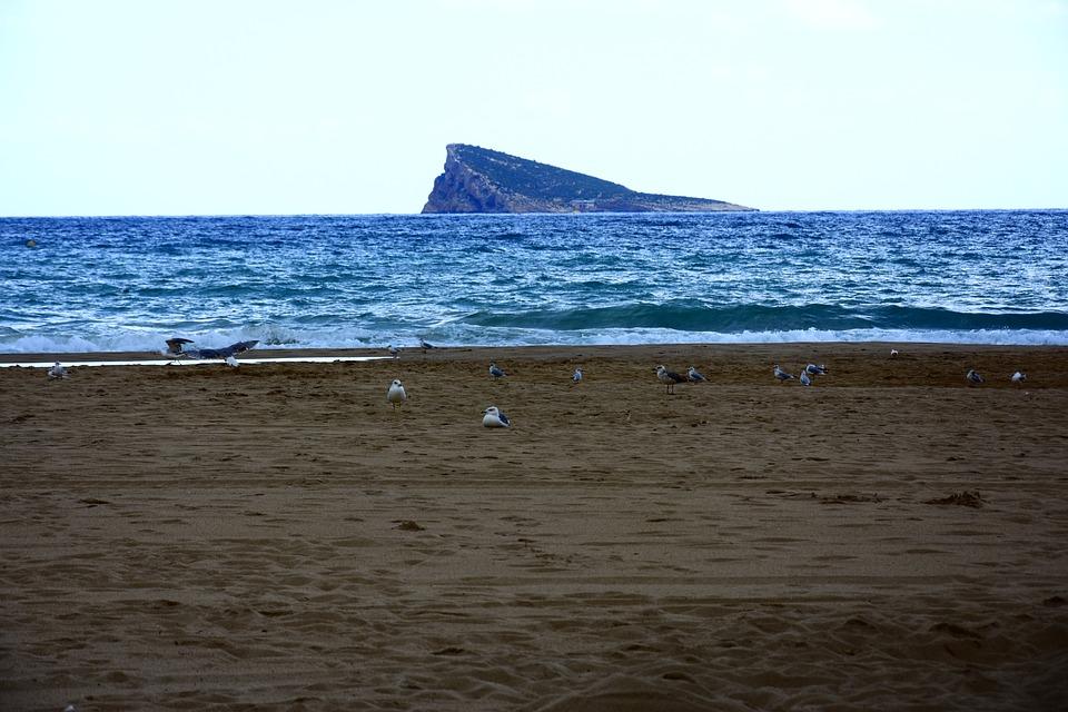 Sea, Beach, Sun, Ocean, Waves, Holiday, Dusk, Summer