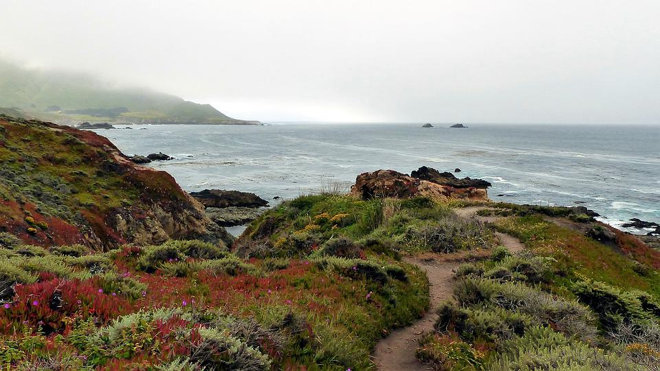 Sea, Nature, Oceans, Rain, Bullying, Fog, Coastal Path