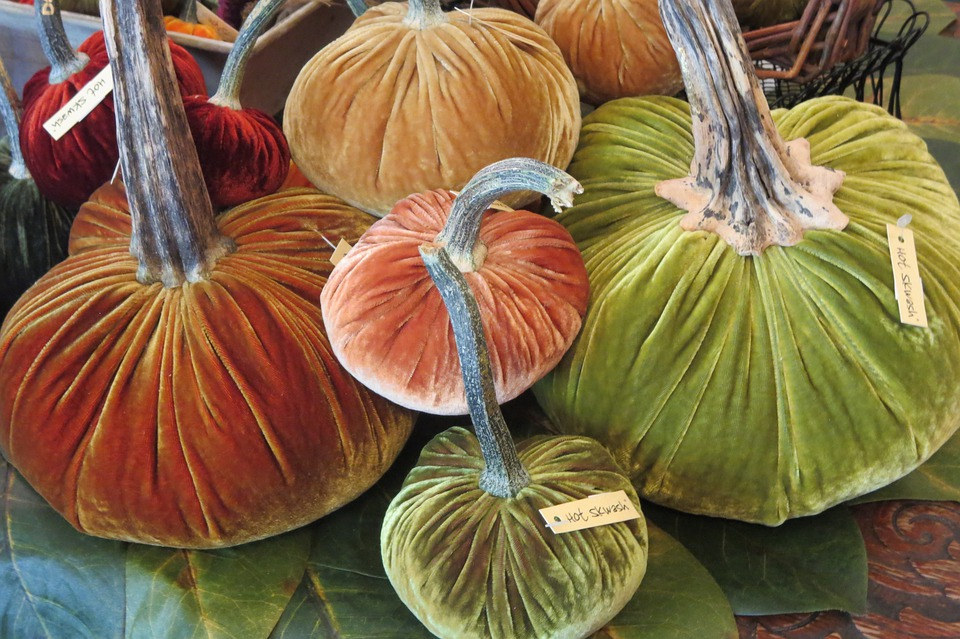 Pumpkins, Halloween, October, Thanksgiving, Harvest