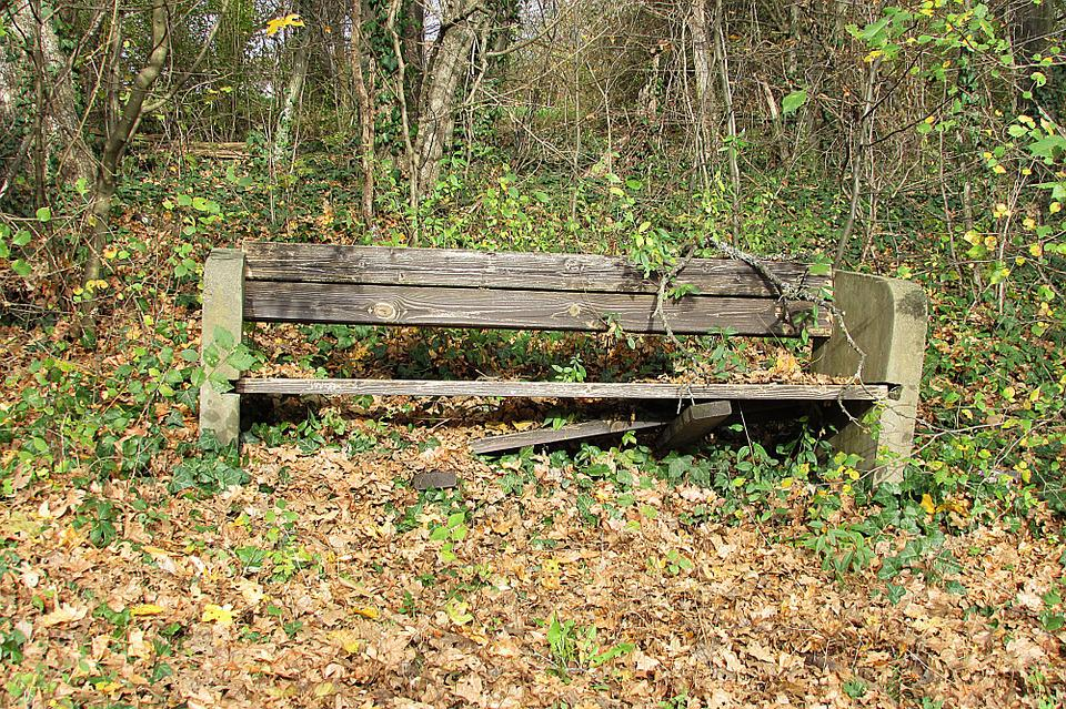 Old Bench, Lapsed, Park Bench, Seat, Bench, Forest