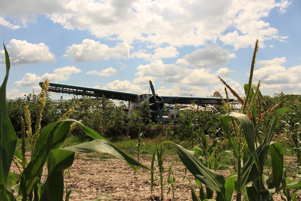 Aircraft, Cornfield, Old, Crash Landing, Double Decker