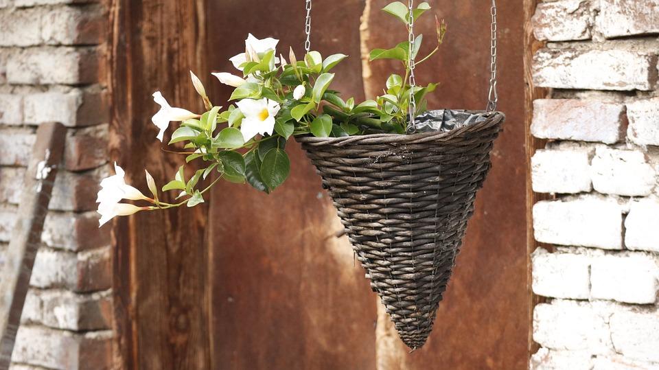 Flowers, Basket, Summer, Romantic, Barn, Old Door