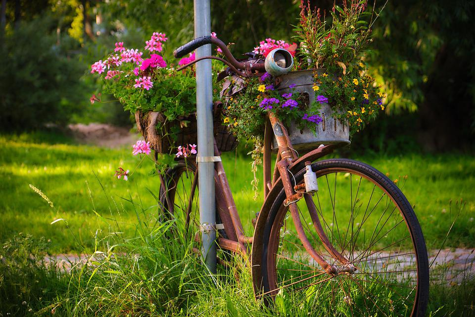 Bike, Rust, Old, Flowers, Recycling, Scrap, Turned Off