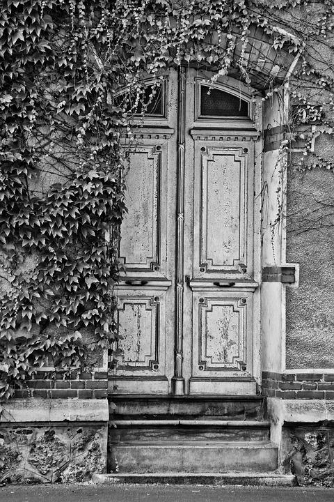 Door, Old, Dark, Markets, Ivy, Black, White, Grey