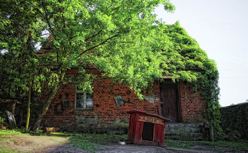 Old House, Cottage, Architecture, The Roof Of The