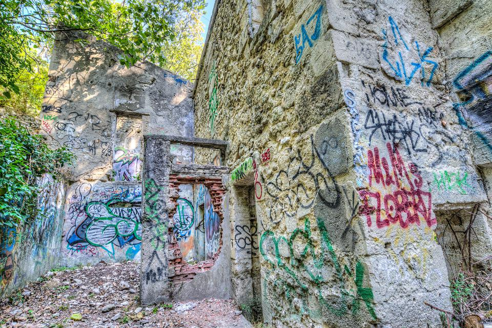 Abandoned, House, Overgrown, Graffiti, Old, Building