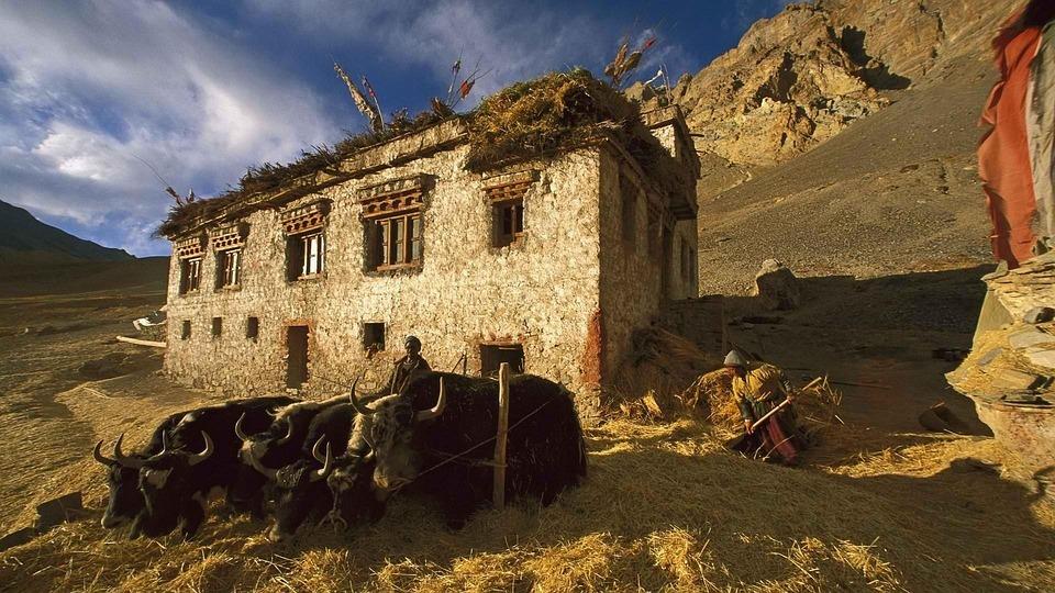 Sandy, Mountains, Old House, Kashmir, India, Sunny