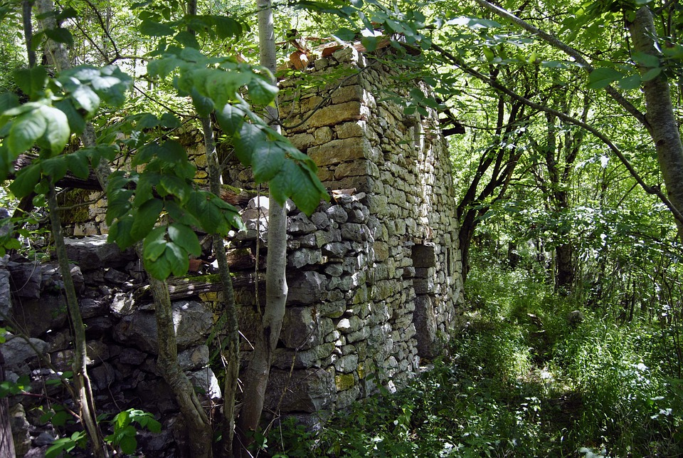 People, Abandoned, Houses, Old, Trees, Weed, Asturias