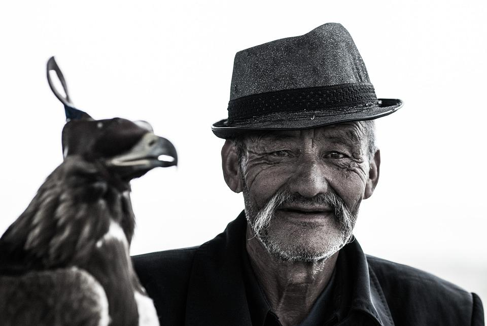 Animal, Bird, Elderly, Hat, Man, Mustache, Old, Person