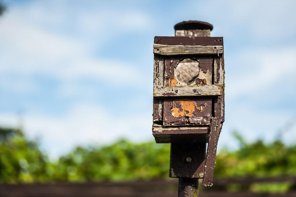 Nesting Box, Old, Bird, Color, Wood