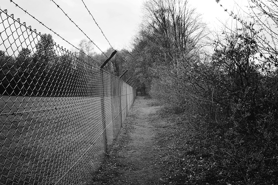 Fence, Barbed Wire, Metal, Wire, Old, Risk, Demarcation