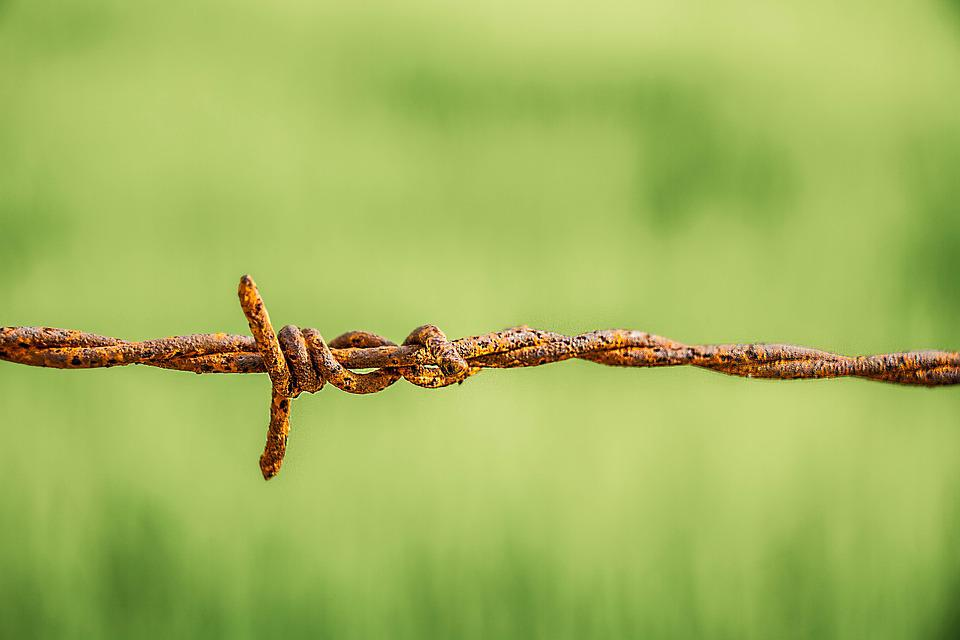 Barbed Wire, Rust, Old