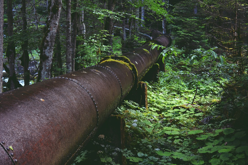 Pipeline, Water Pipe, Forest, Water, Line, Metal, Old