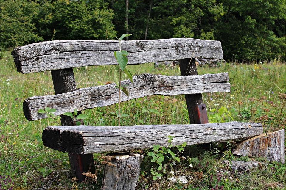 Old Wood Bench, Bank, Weathered, Bench, Click, Nature