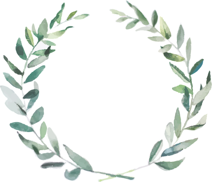 Branch, Olive, Nature, Boho Wedding, Green Olives
