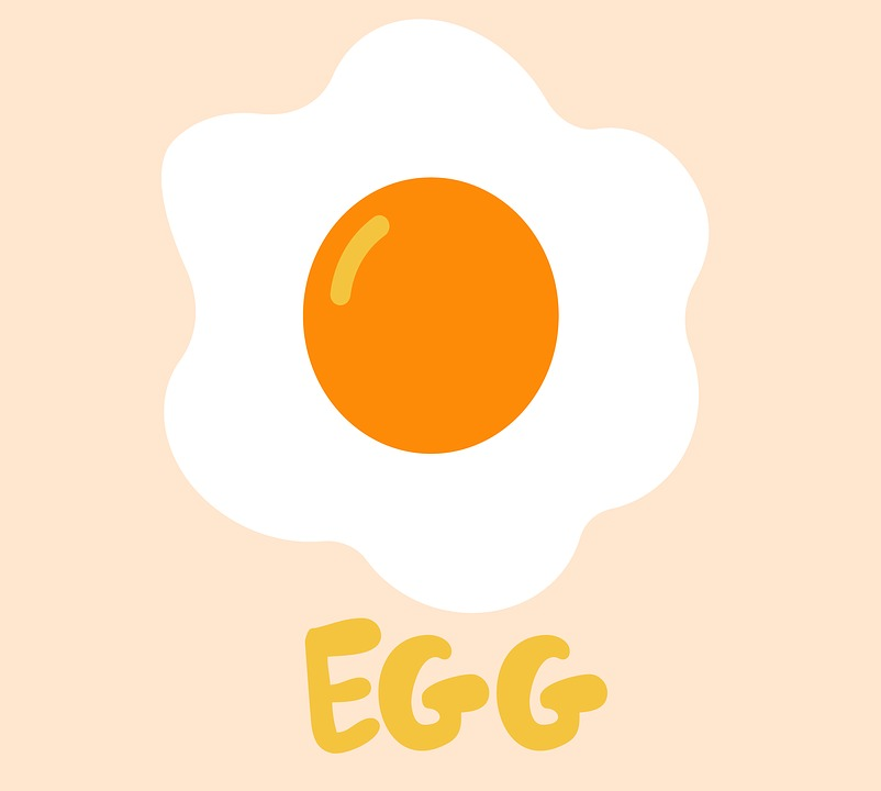 Egg, Eating, Chicken, Omelette, Food, White, Cooking