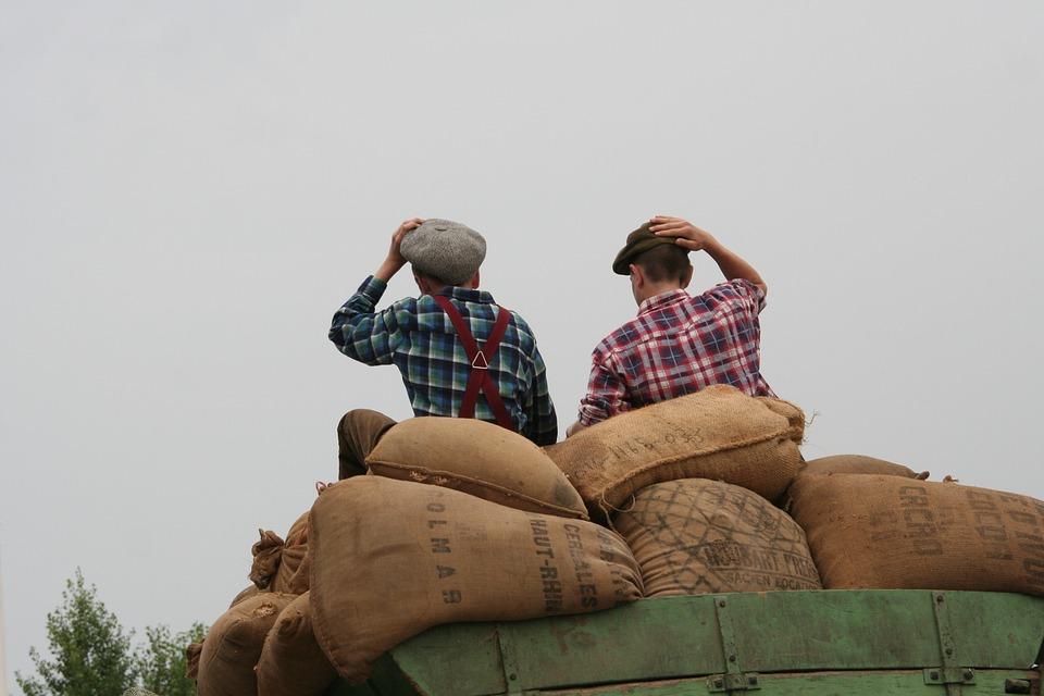 Boys, Sitting, On Grain Bags, Well-wishers