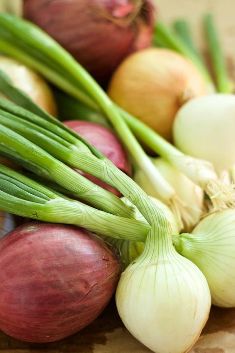 Onion, Vegetable, Spring